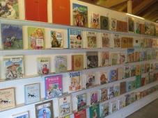 So viele verschiedene Heidi Bücher / So many different Heidi books