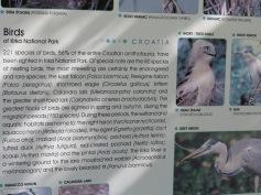 Das Wildleben im Nationalpark / Wildlife in the national park