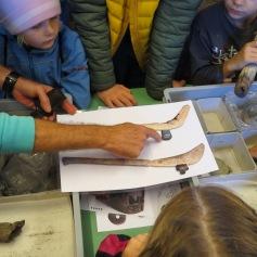 Werkzeuge der Jungsteinzeit / Tools of the Neolithic Age