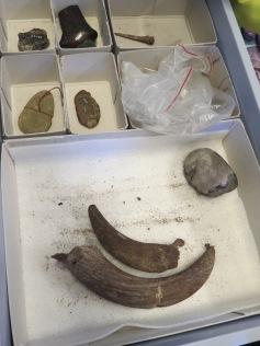 Fundstücke / Found items