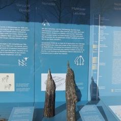 Pfahlüberreste / Stilt remains
