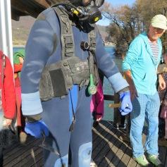 Ein tauchender Archäologe / A diving archeologist