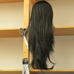 Perücken / wigs