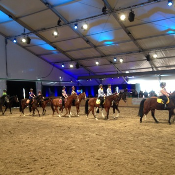 Was wäre eine BEA ohne Pferde? / What would the BEA be without horses?
