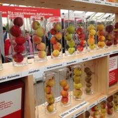 Lehrreiche Ausstellung über Früchte und die vielen Apfelsorten, die wir in der Schweiz haben / Educational exhibition about fruit and the many different kinds of apples we have in Switzerland