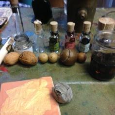 Verschiedene natürliche Tinten / Various natural inks