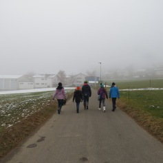 Im Nebel bei den Feldern entlang / Going past the fields in the fog