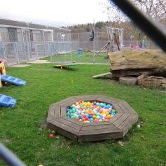 Welpenkindergarten / Puppy kindergarten