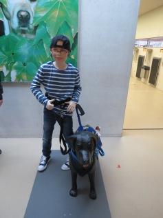 Sie trainieren auch Begleit- und Assistenzhunde / They also train dogs to help autistic children and disabled people