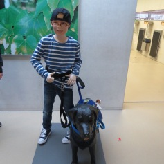 Sie trainieren auch Begleit- und Assistenzhunde / They also train dogs to help autistic children and disabled people