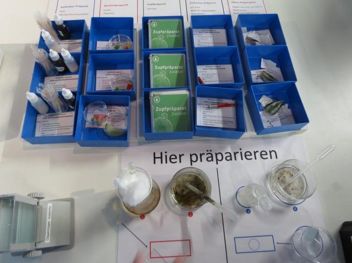 Die eigenen Objekte präparieren / Preparing their own objects