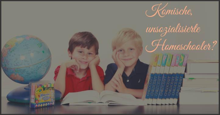 Unsozialisierte Homeschooler